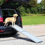 Rampe pour chien - Choisir une rampe d'accès pour votre chien