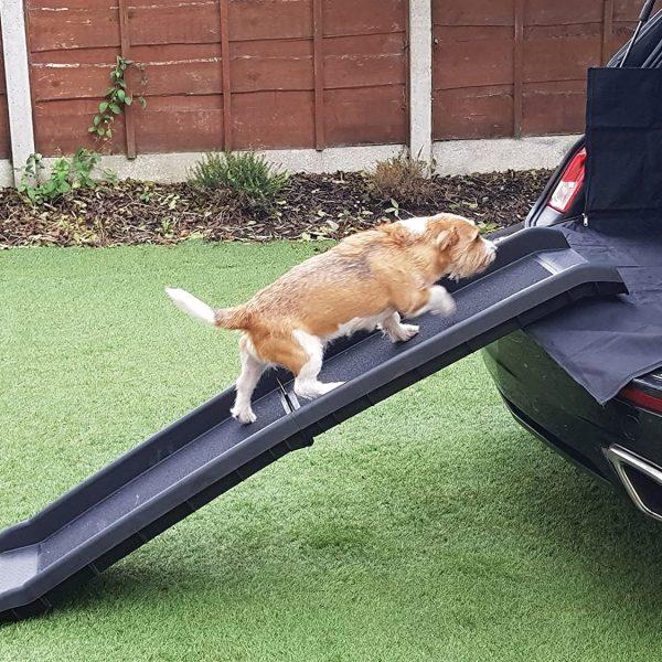 La meilleure rampe pour chien