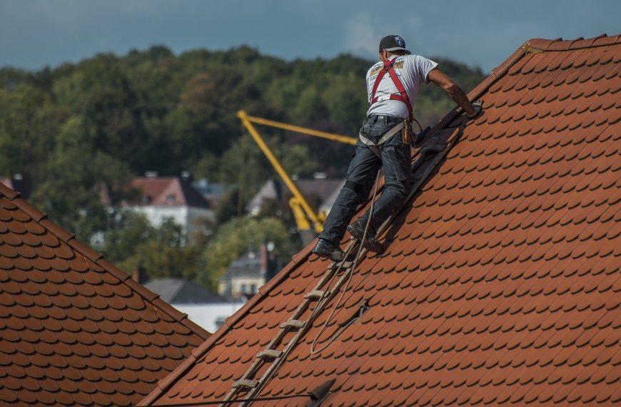 La meilleure échelle pour travailler sur le toit – Avis et Comparatif