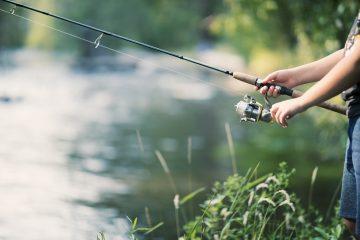 Les 4 meilleures cannes à pêche